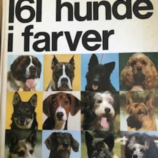 161 hunde i farver