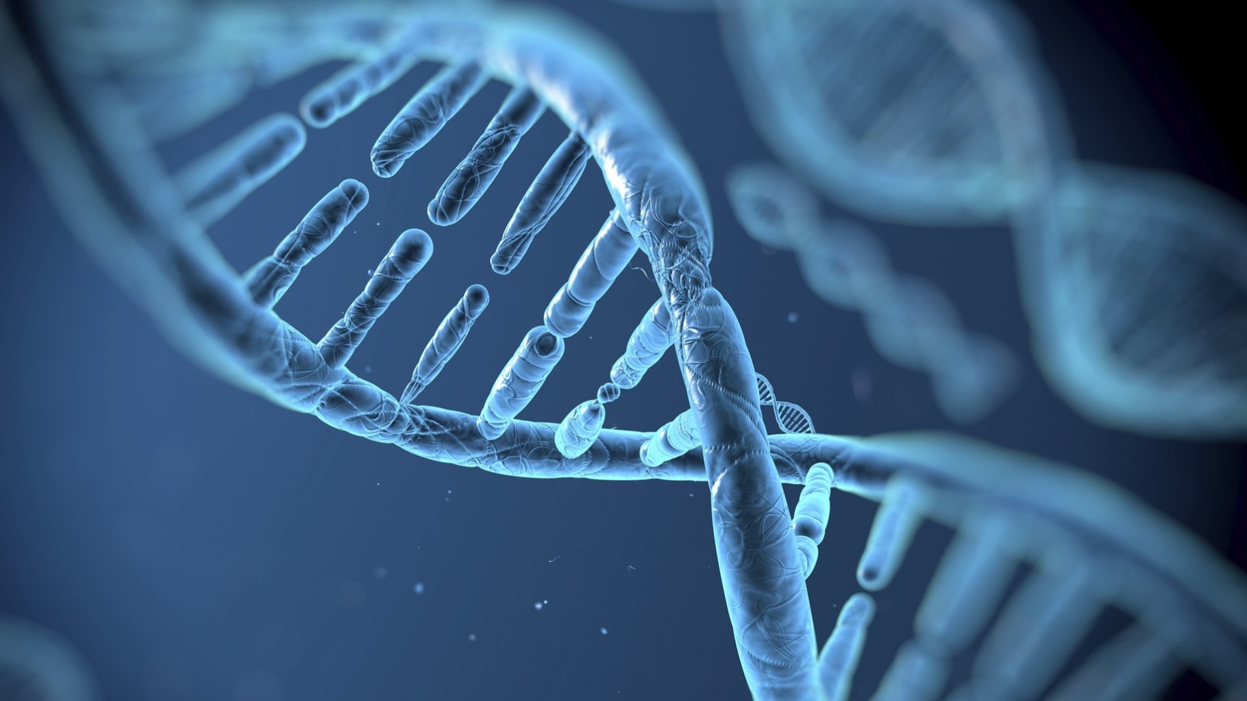 Хранение цифровых данных в ДНК