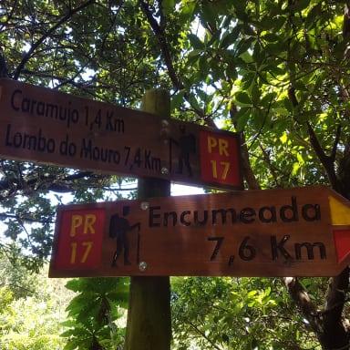 Мадейра. Из Lombo do Mouro на Encumeada. Madeira.