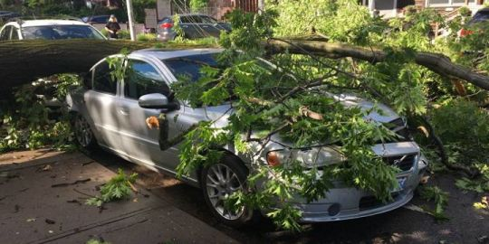 Around 2,100 customers still without power after short, intense storm in Toronto: hydro