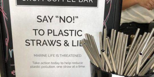 Edmonton coffee shop ditches plastic straws: 'We felt it's our due diligence'