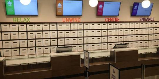 'Modern and bright': NSLC unveils renovated cannabis retail outlet ahead of legalization