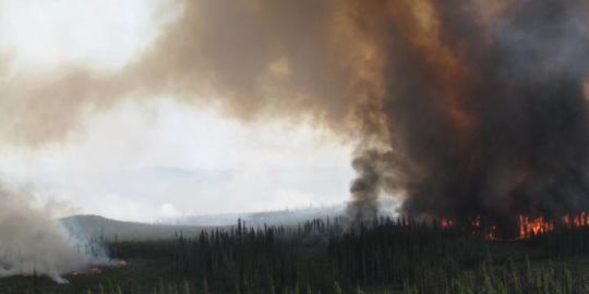 B.C. government requests help from federal government to fight fires