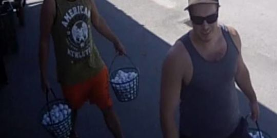 Golf enthusiasts drive away with hundreds of allegedly stolen balls