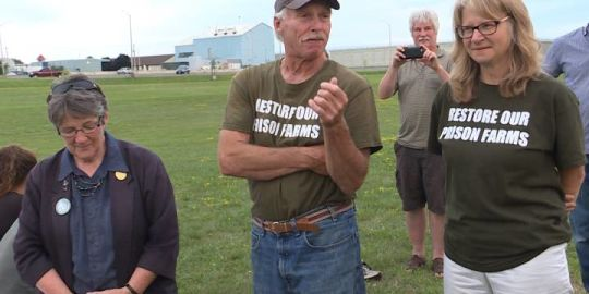 They protested till the cows came home: Dozens celebrate the return of prison farms to Kingston