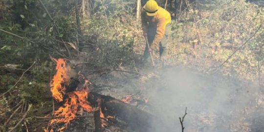 FireBoss airplane crashes while fighting blaze southeast of Grand Forks in Washington state