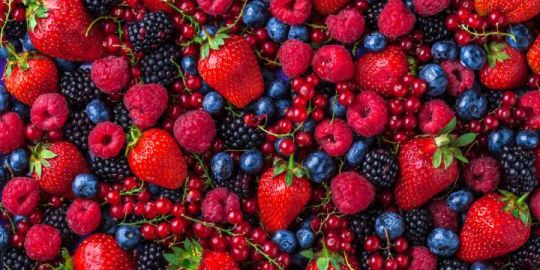 Producers say berry prices won't go up in Quebec despite heat wave