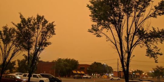 'Lovely morning in the apocalypse': Edmonton wakes up to orange, smoky sky