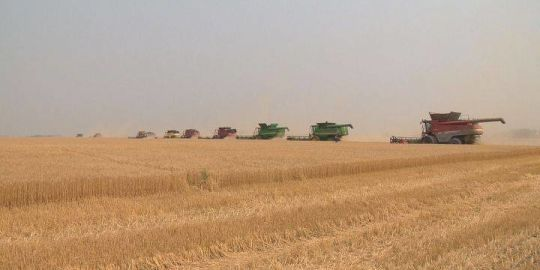 Taber and District Foodgrains Project helps to combat world hunger