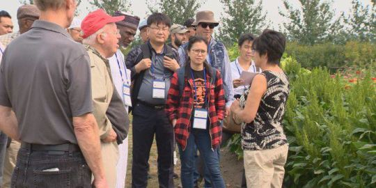 Saskatchewan irrigation in spotlight during international conference