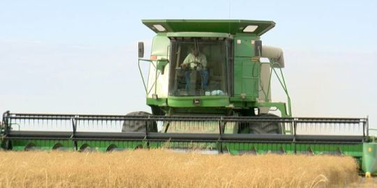 58% of 2018 Saskatchewan crop now harvested