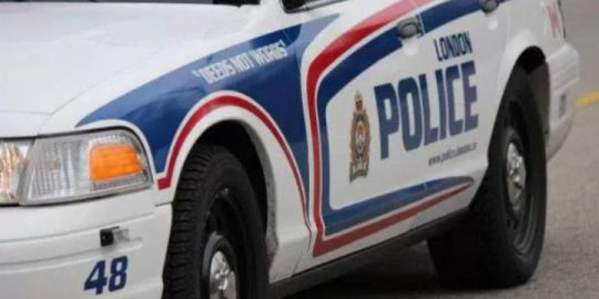 2 men charged with resisting arrest, assaulting officers: London police