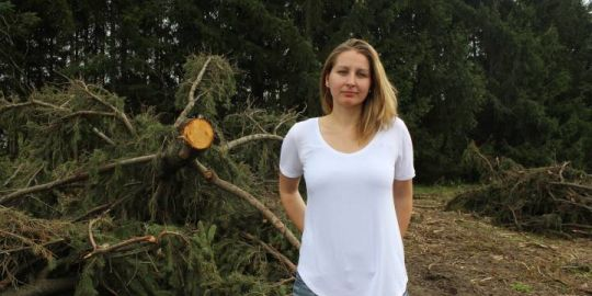 Activist pens letter to London councillors to stop 500 trees from being bulldozed