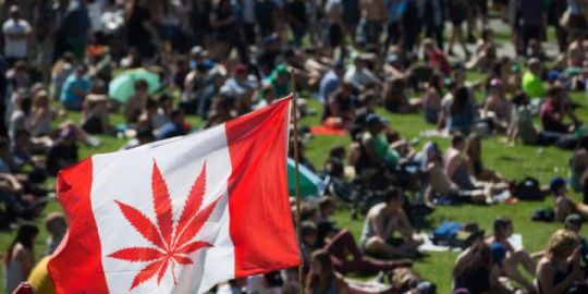Cannabis IQ: Across the country, here's what to expect on legalization day