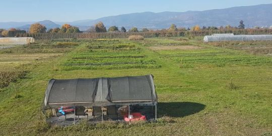 Okanagan matchmaking service connects farmers with landowners