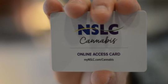 Here is what the NLSC's secure cannabis website looks like