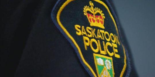 Police dog bites alleged Saskatoon truck thief