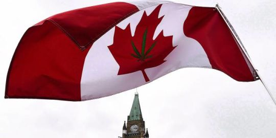 Liberals say legalizing cannabis is just the start, and lots more needs to be done