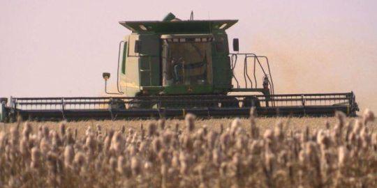 Harvest slowly progresses in Saskatchewan