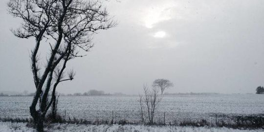 Snow squall watch issued for Barrie, Midland, Orillia: Environment Canada