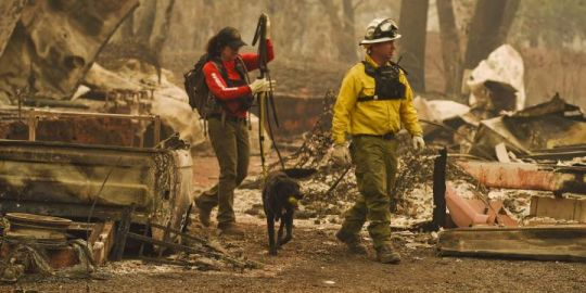 Death toll in California wildfires climbs to 48 as search for missing continues
