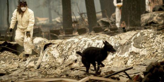 Northern California fire leave at least 56 dead, 130 still missing