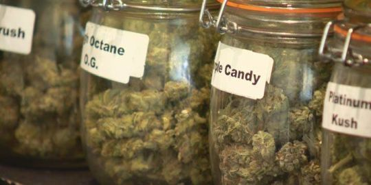 Guelph council approves allowing cannabis retail stores to operate in city