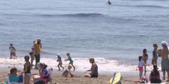 Bayfront Park beach in danger of closing 'indefinitely' to swimmers
