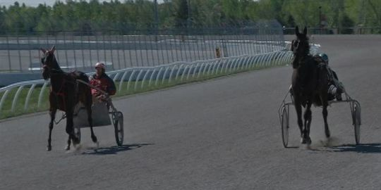 Kawartha Downs to hold 18 race schedule this summer