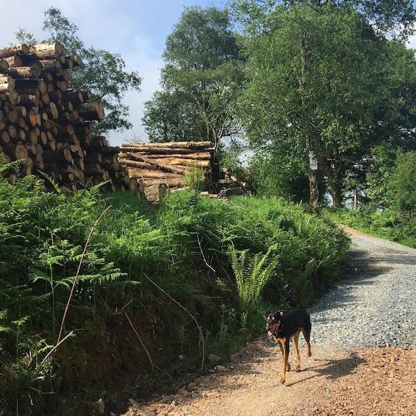 Keeper Hill Hike