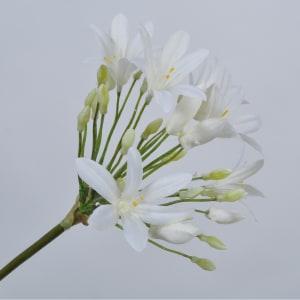Silk-ka blomst Agapanthus 70cm