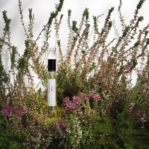 skandinavisk parfyme heia