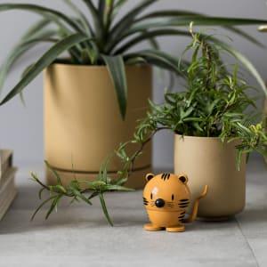 Hoptimist baby tiger
