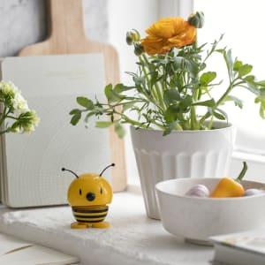 Hoptimist baby bee