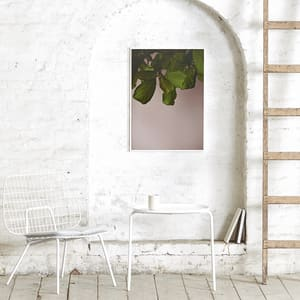 Paper collective plakat 30x40 green leaves