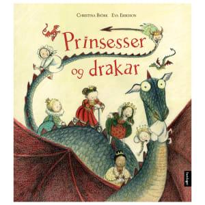 samlaget bok prinsesser og drakar