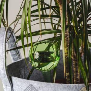 Muurla Selvvanningskule Grønn