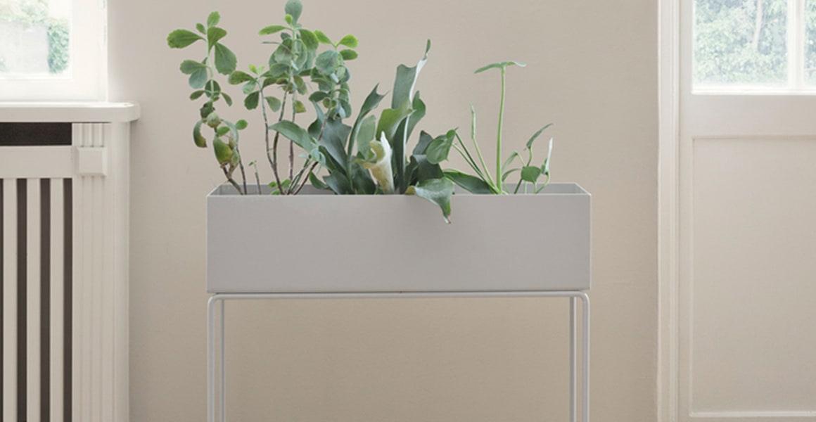 Plant Box grå fra Ferm Living