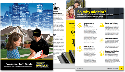 Tint World Commercial Consumer Guide