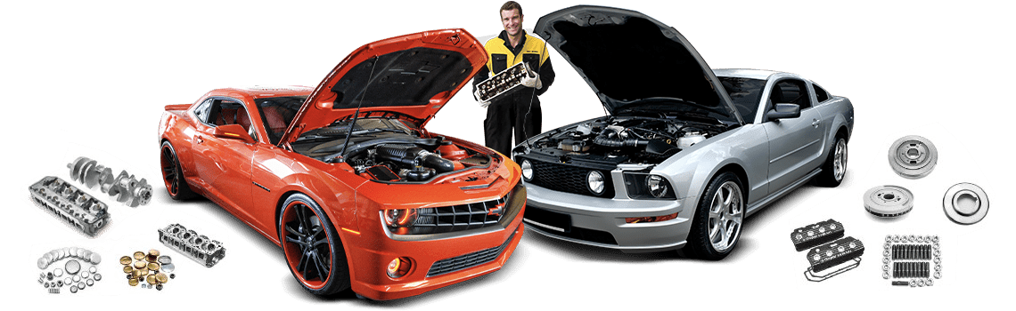 Tint World Mechanic