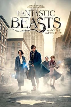 Fantastic Beasts and Where to Find Them 360: The Blind Pig