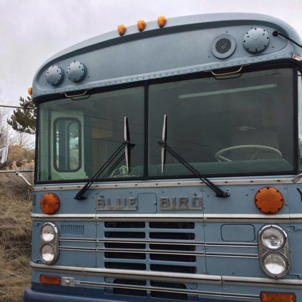 Tiny Home Bluebird Bus Tiny House For Sale In Bozeman