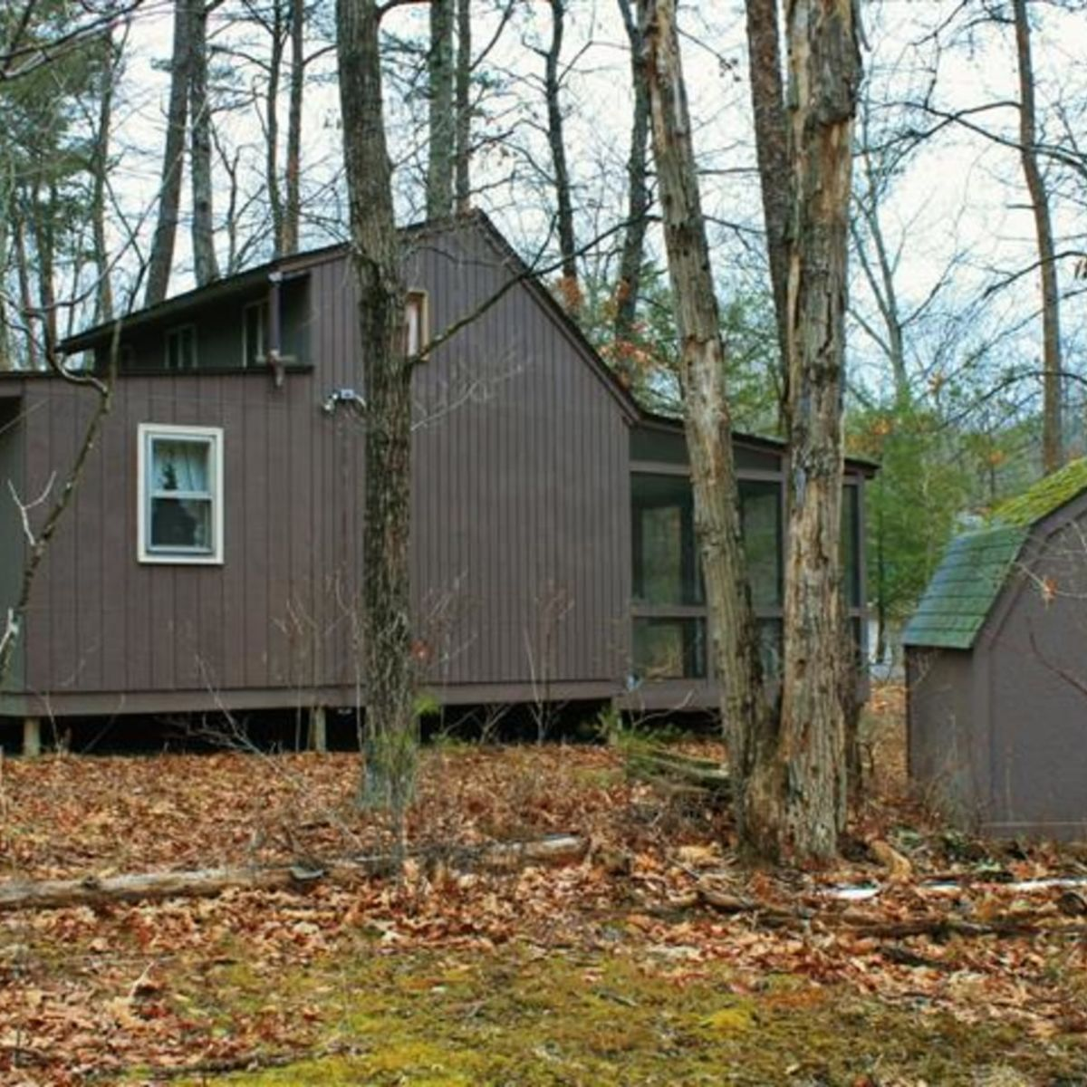 Tiny Little West Virginia Cabin On 2.76 Wooded Acres