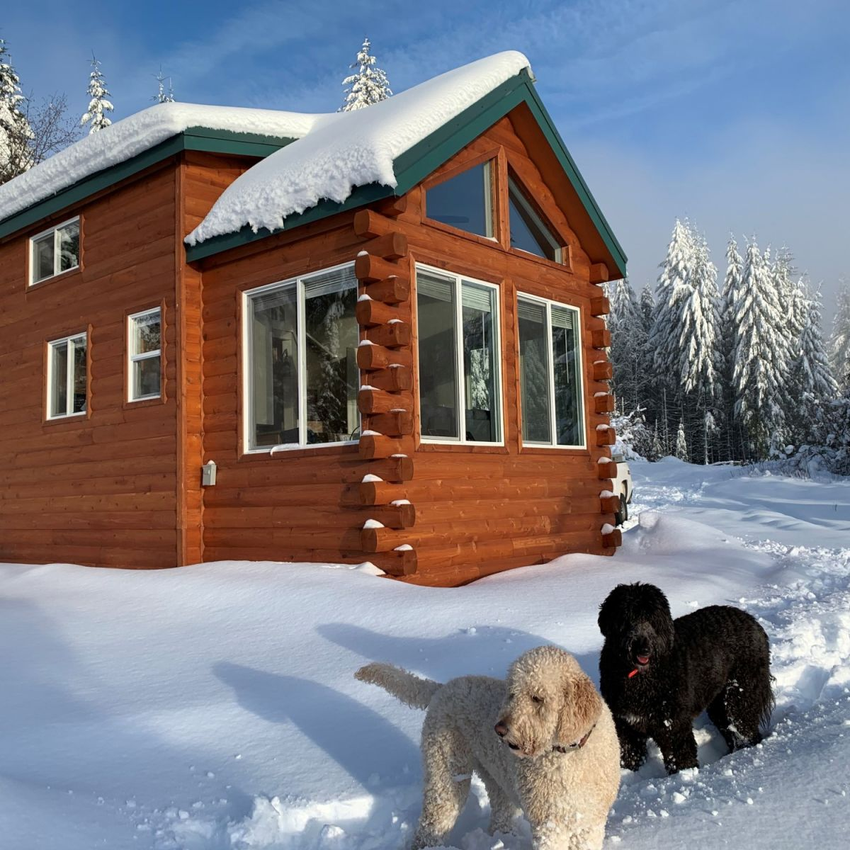 Tiny Houses For Sale In Oregon