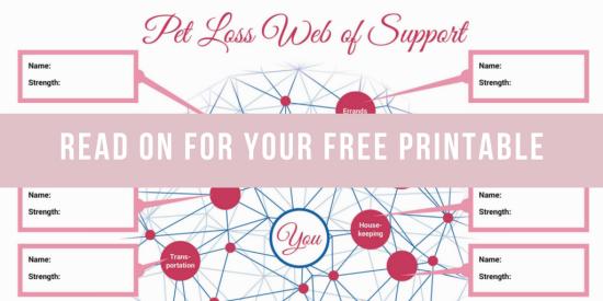 Banner  Brainstorm  Pet  Loss  Web Of  Support  Network Tiny Pet Memories