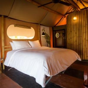 Ayutthaya & Mae Klong ab Bangkok: 1th-lala-mukha-tented-camp-dlx-savannah-tent-01-17