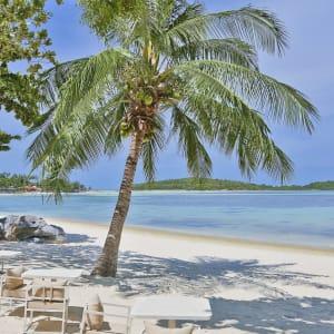 Ayutthaya & Mae Klong ab Bangkok: beach: SALA Samui Chaweng Beach Strand