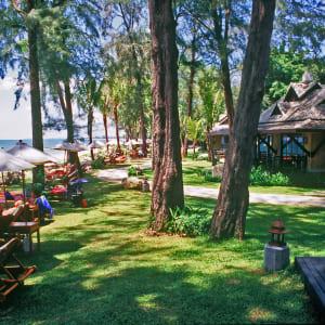 Ayutthaya & Mae Klong ab Bangkok: beach: Thailand Moracea by Khao Lak Garten und Strand