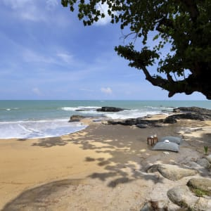 Ayutthaya & Mae Klong ab Bangkok: beach: Thailand Moracea by Khao Lak Strand
