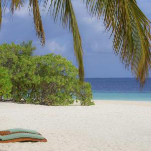 Coco Bodu Hithi in Malediven:  Malediven Coco Bodu Hithi